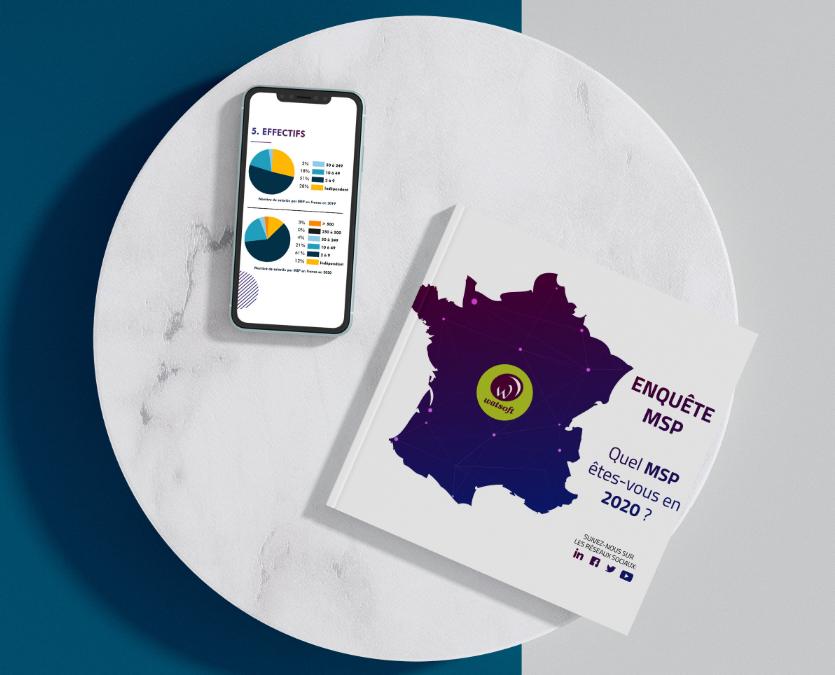 Enquête : le paysage francophone des MSP en 2020